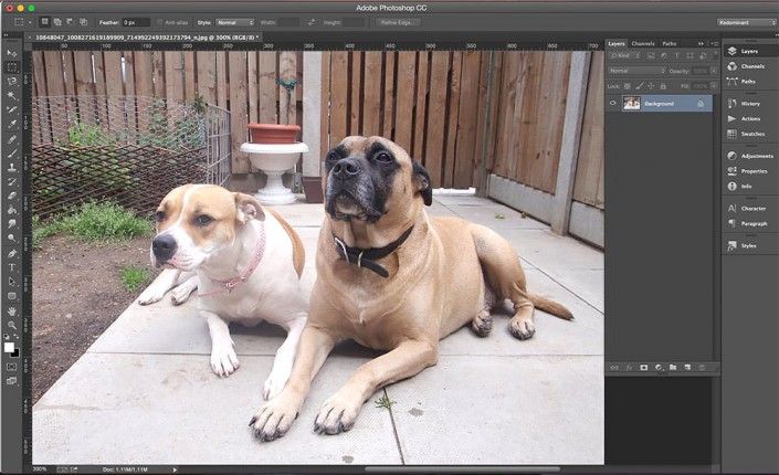 Adobe Photoshop screen